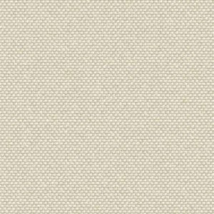 intercept-outdoor-fabrics-outdoor-outdura-patterns-rumor-vanilla